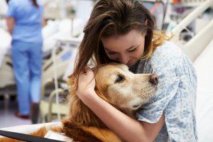 Four-Legged Therapists: Pets Provide Mental Health Help