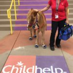Handler Joey Ogburn and Raleigh the miniature therapy horse outside of the Childhelp Children's Center of Arizona.